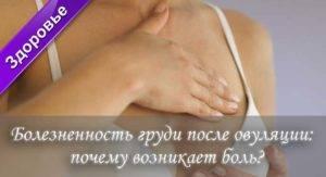 Болят соски после овуляции: болят соски во время овуляции