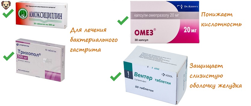 Антибиотики при гастрите с хеликобактер пилори: схемы лечения