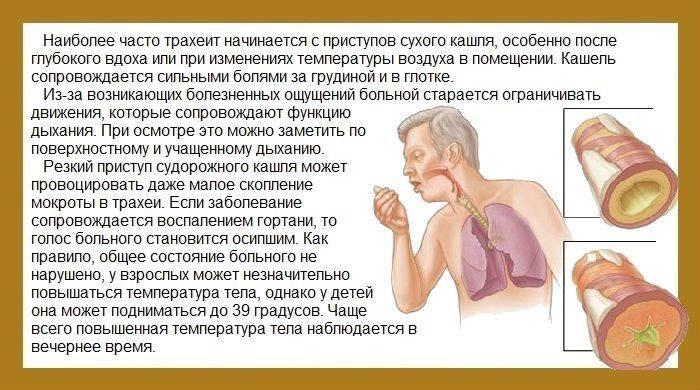 Причины кашля без температуры