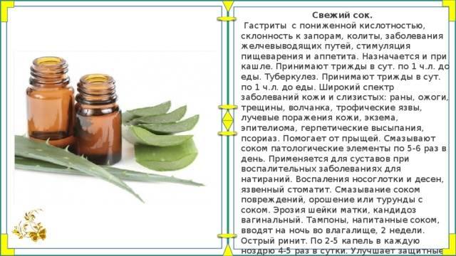 10 эффективных рецептов лечения гастрита с повышенной кислотностью народными средствами