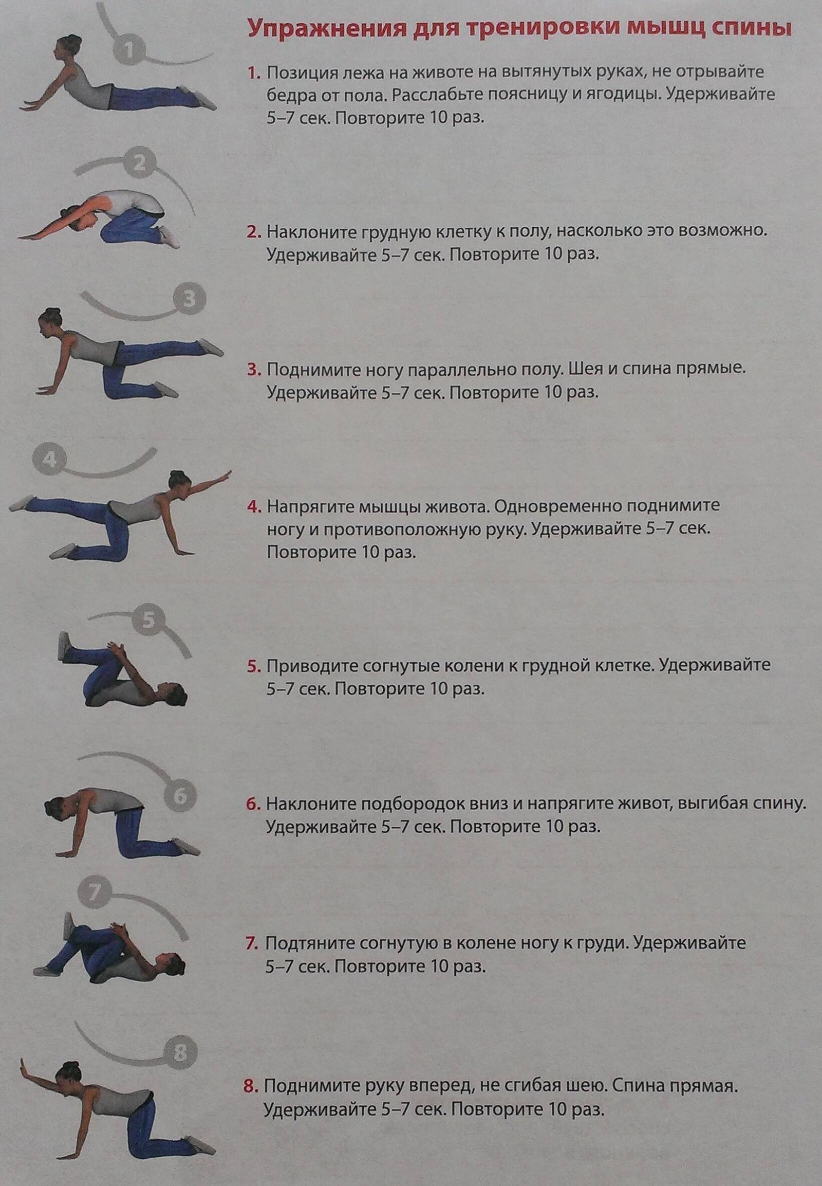 Зарядка для укрепления мышц спины и позвоночника: комплекс упражнений