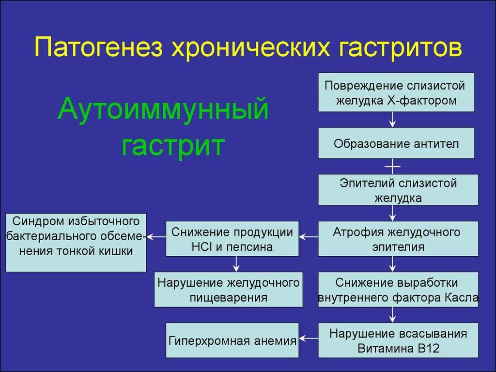 Аутоиммунный гастрит: лечение, симптомы, патогенез, клинические рекомендации