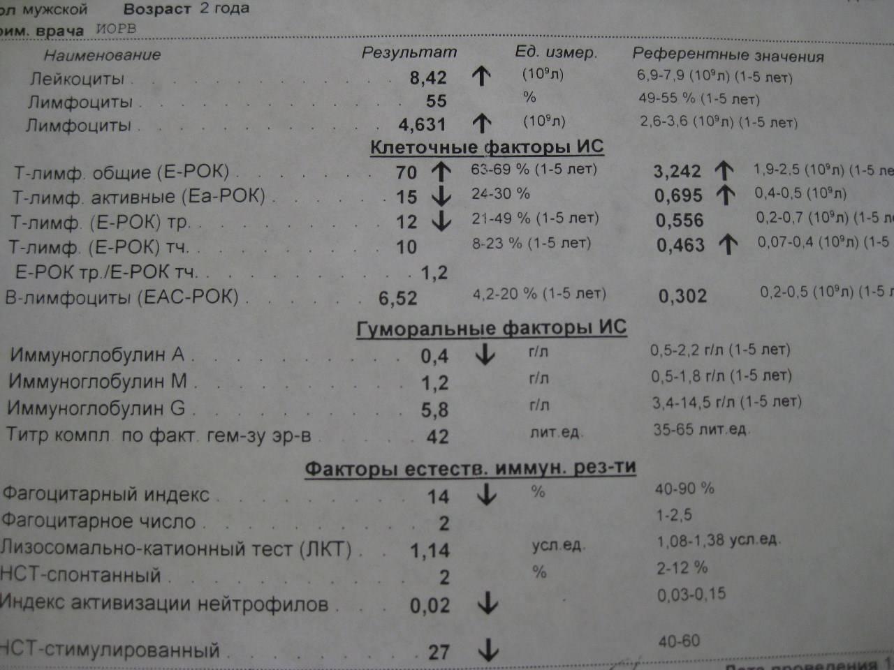 Иммунограмма: расшифровка, что показывает, норма, таблица с результатами