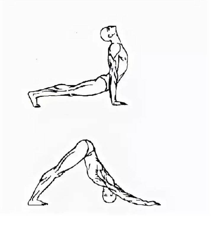 Око возрождения: схема 5 тибетских упражнений (5 жемчужин)