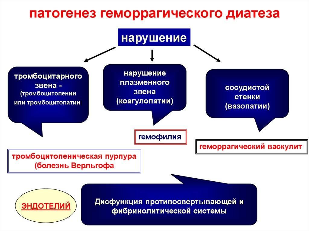 Тромбоцитопеническая пурпура (болезнь верльгофа). этиология. патогенез. клиника, диагностика. лечение. - alexmed.info