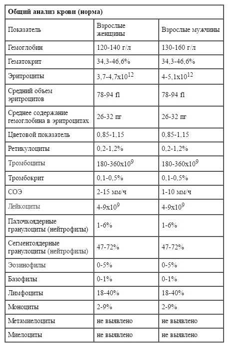 Норма показателей общего анализа крови при беременности в таблице, расшифровка значений