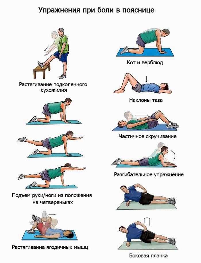 Зарядка для укрепления мышц спины при сколиозе, остеохондрозе и грыжах позвоночника