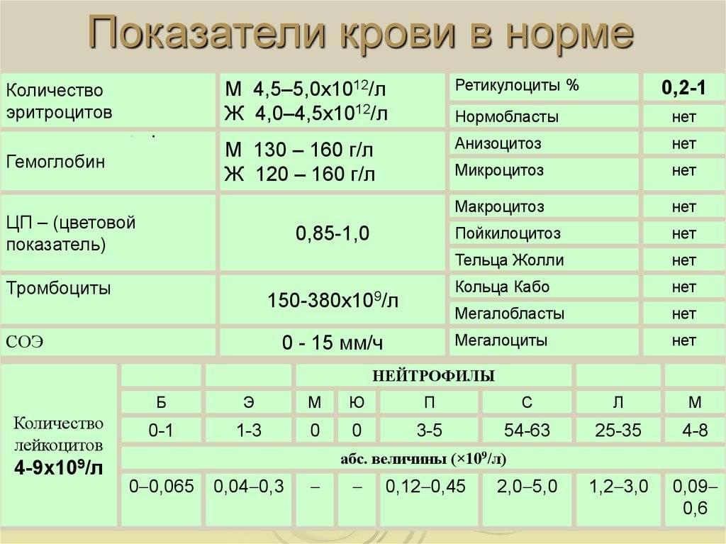 Норма тромбоцитов в крови у женщин и мужчин по возрасту – таблица концентраций