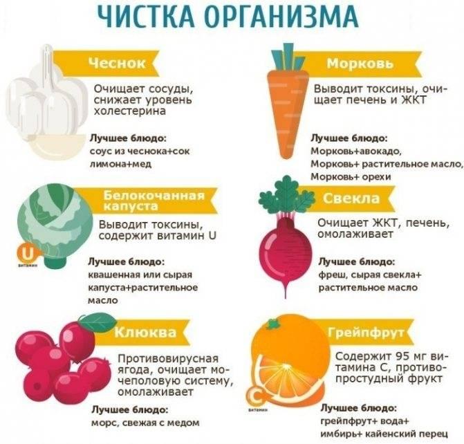 Детокс очищение организма. программа, меню для чистки печени, тела, мозга, желудка. препараты
