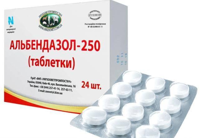 Таблетки от аскарид для человека