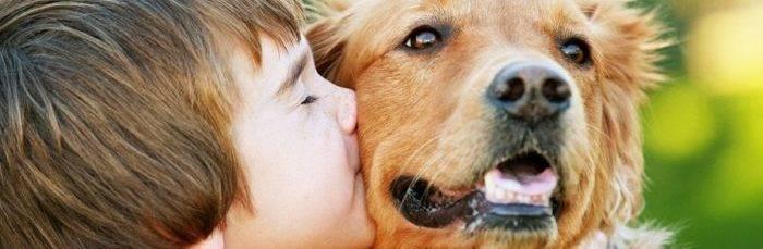 Токсокароз у детей: симптомы и лечение