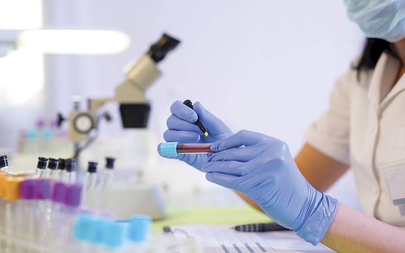 Анализ крови на аскариды лямблии