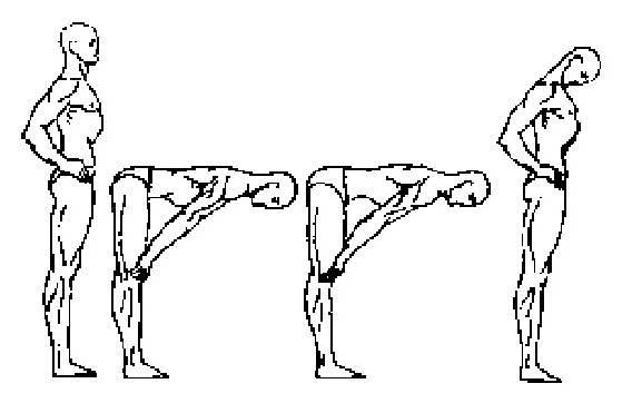 Зарядка питера кэлдера - пять упражнений тибетских монахов