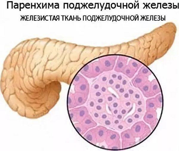 Что такое гепатомегалия печени на фоне диффузных изменений? причины и признаки увеличения, диффузных изменений печени и поджелудочной железы