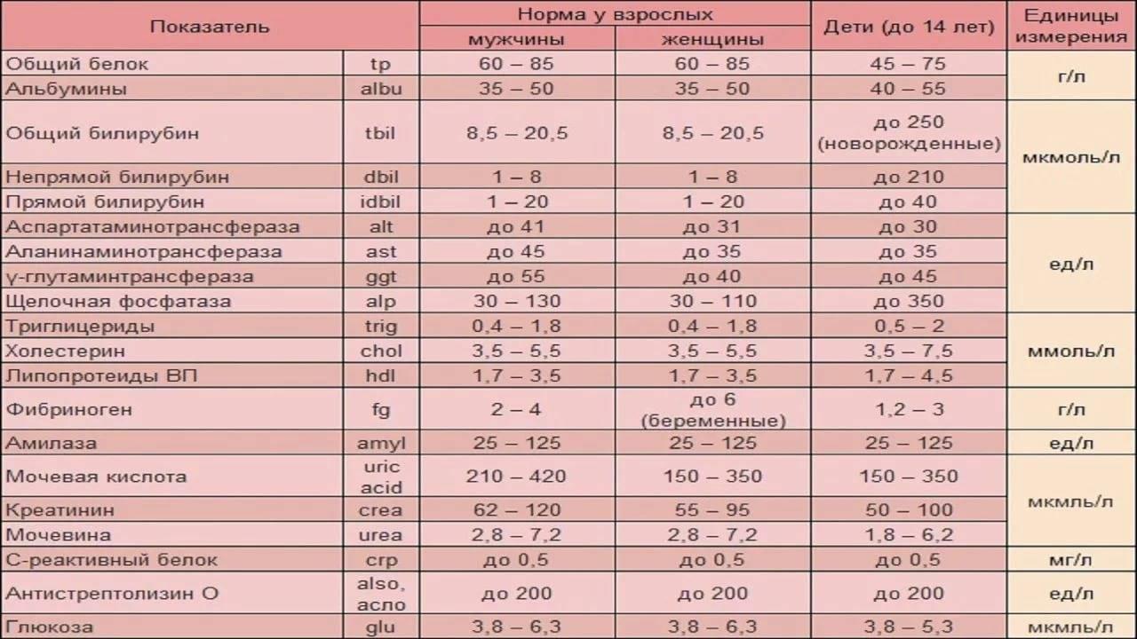 Коэффициент (индекс) атерогенности: формула расчета и значение в медицине