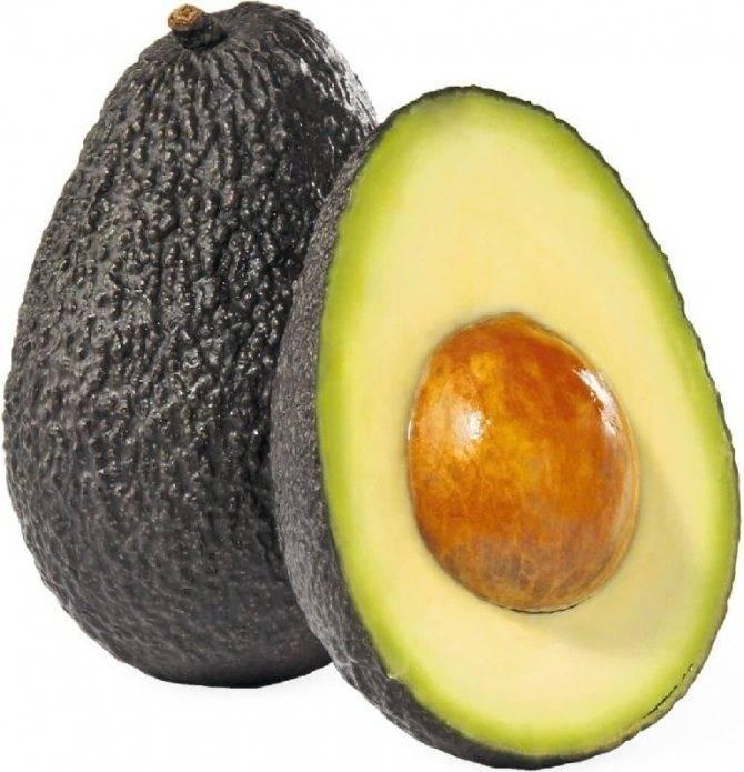 Авокадо при гастрите можно или нет