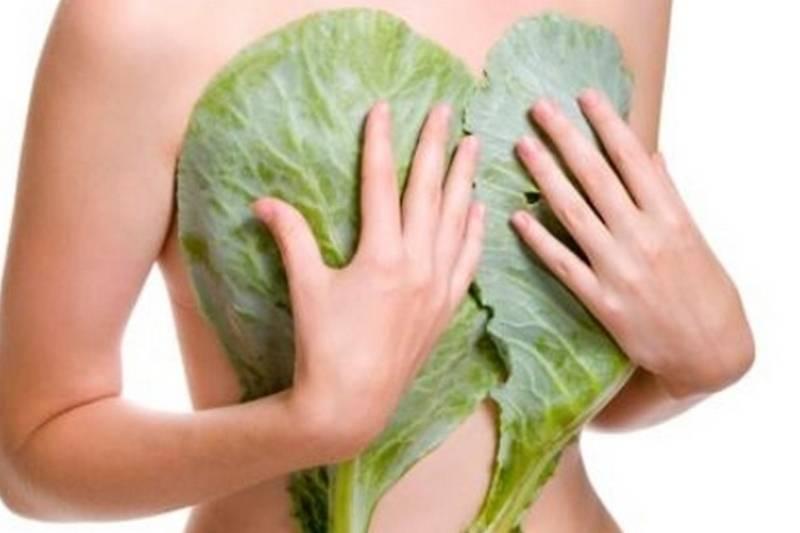 Какими симптомами сопровождается мастопатия при климаксе: сущность патологии и отзывы женщин