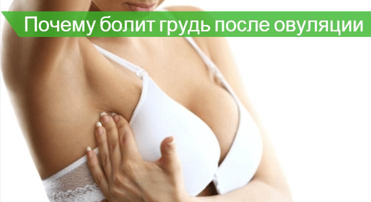 Набухла грудь после месячных: возможные причины, норма и отклонения, методы терапии, профилактика