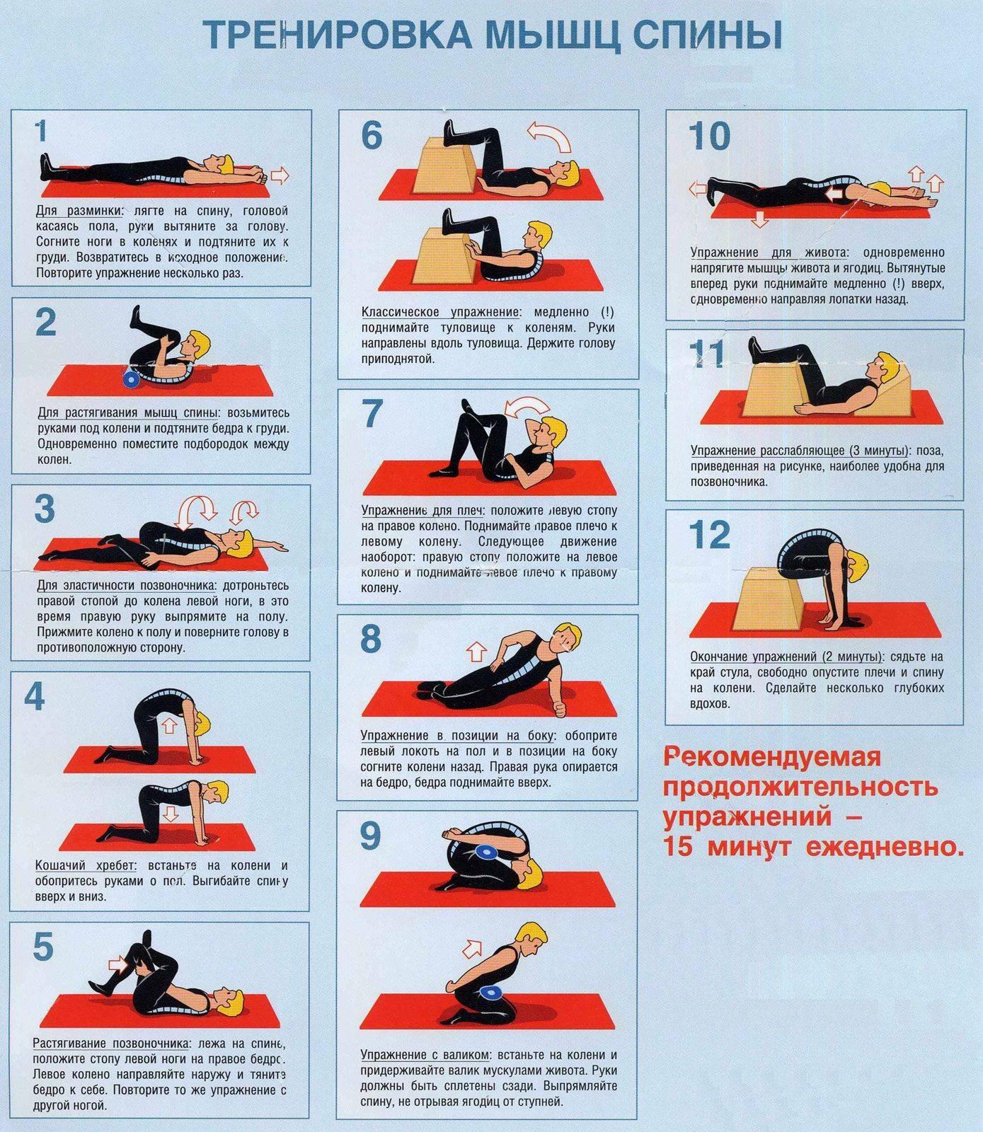 Зарядка для мышц спины и позвоночника: преимущества, разминка, растяжка, упражнения при различных заболеваниях