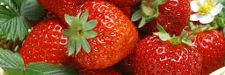 Какие фрукты можно употреблять при гастрите и какие запрещены