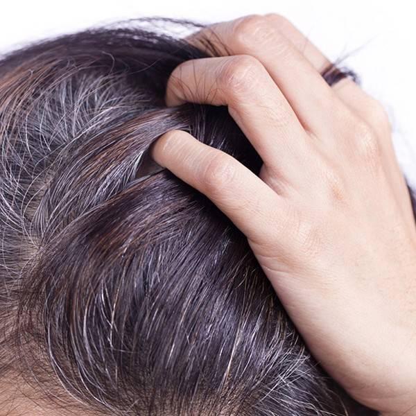 Как закрасить и скрыть седину на тёмных волосах с помощью разных техник окрашивания, косметических и натуральных средств, отзывы