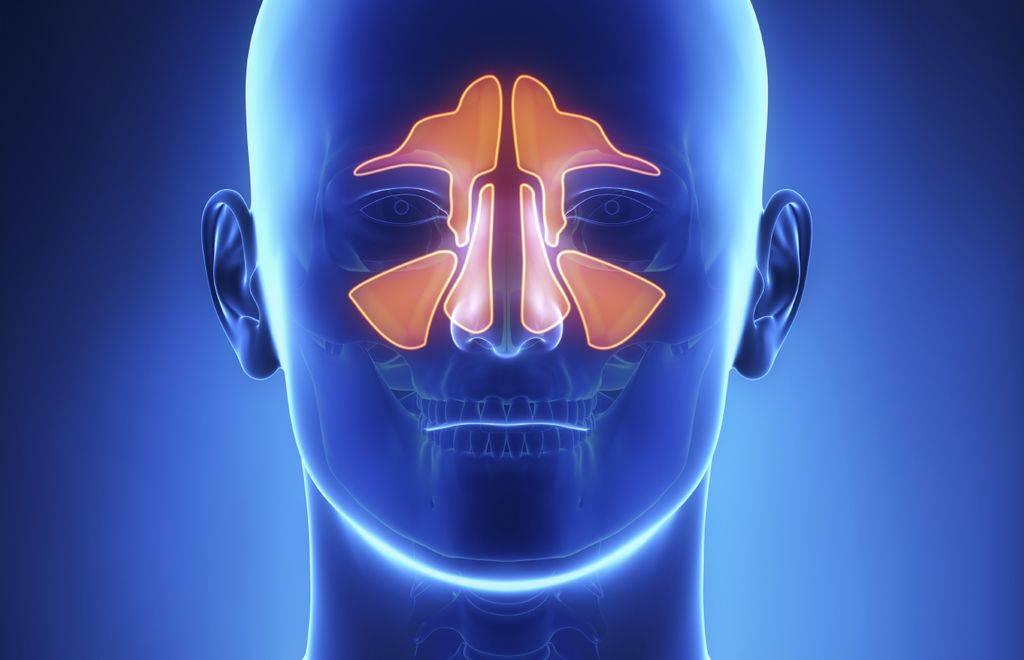 Что лучше: кт или мрт пазух носа и какую процедуру выбрать
