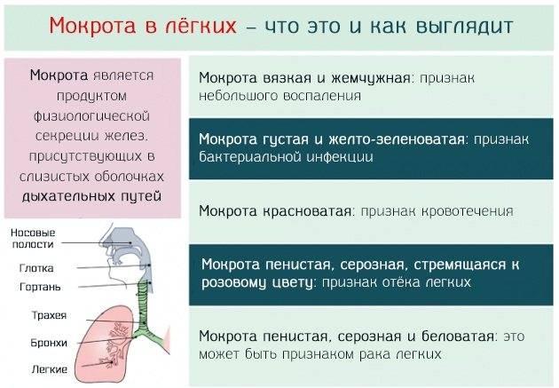 Жесткое дыхание у ребенка и взрослого: что это такое, причины и лечение | prof-medstail.ru