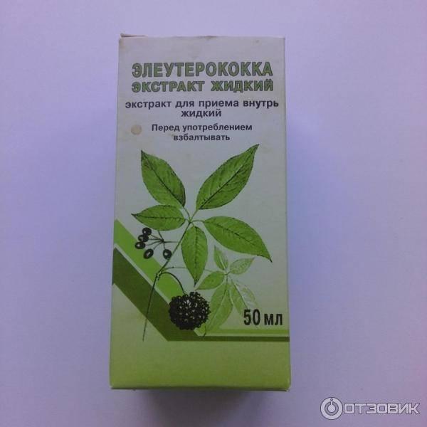 Настойка элеутерококка: показания и инструкция по применению, рецепты, лечебные свойства | народная медицина