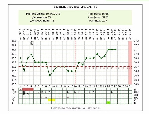 Базальная температура при овуляции: какой она должна быть (графики бт)