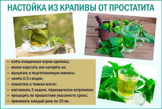 Крапива в гинекологии, лечебные свойства
