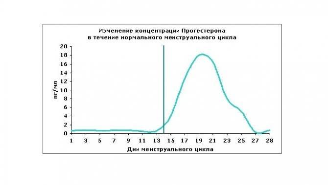 Прогестерон в лютеиновой фазе цикла: высокий, низкий уровень прогестерона у женщин, норма, отзывы