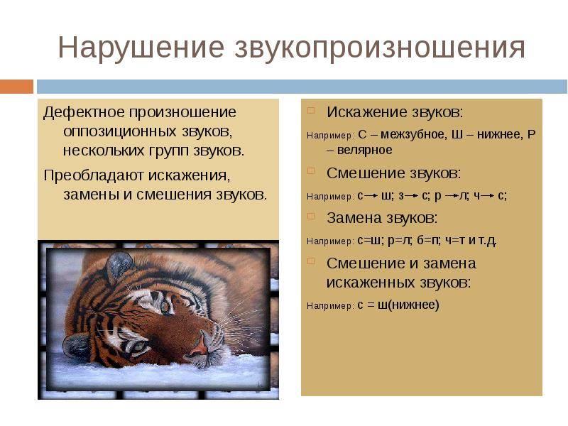 Полиморфная дислалия - причины, симптомы, методы коррекции