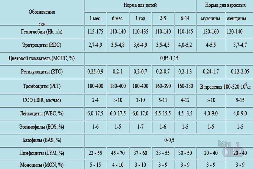 Коэффициент атерогенности повышен: что это такое и что значит