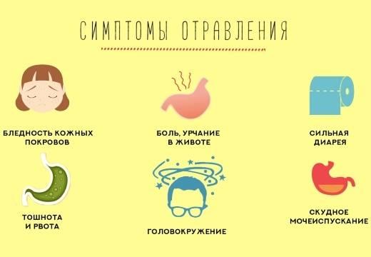Пищевое отравление у ребенка с поносом, рвотой и температурой - про диарею (понос)
