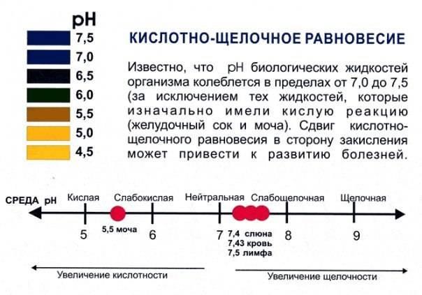 Крови щелочной анализ в много сроках на при поздних цистит беременности