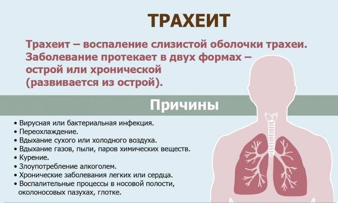 Причины и лечение сухого кашля, покашливания и постоянного першения в горле