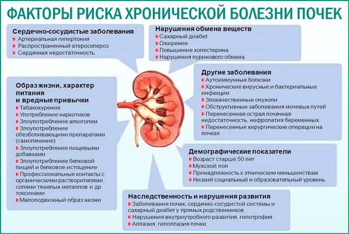 Когда проблемы с почками какие симптомы и лечение | целебные свойства растений