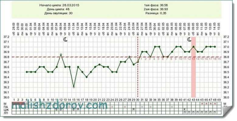 График базальной температуры - примеры и расшифровки