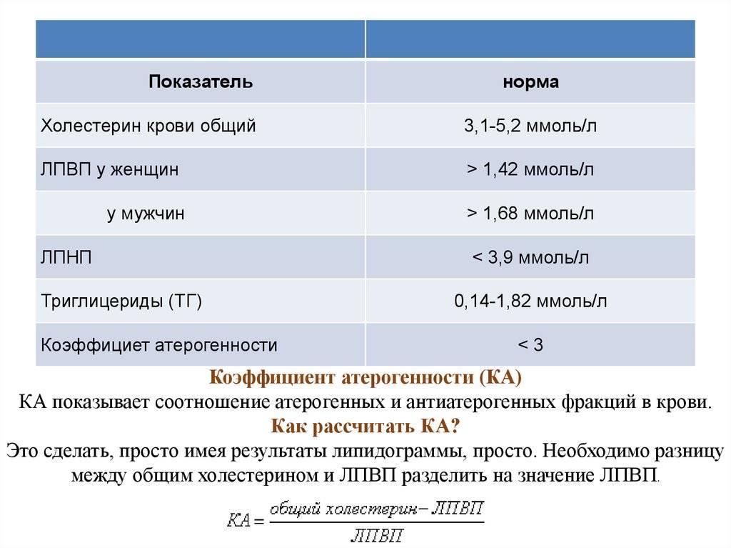 Норма коэффициента атерогенности у женщин и мужчин