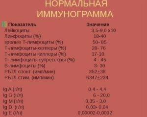 Гематологический анализ крови: что это такое, расшифровка результатов, таблица норм для взрослых и детей, что показывает исследование