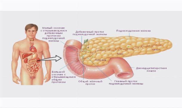 Диффузные изменения печени и поджелудочной железы: причины и методы лечения