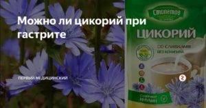 Цикорий при гастрите и других заболеваниях жкт