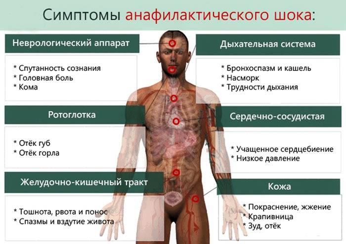 Сепсис крови:что это такое, симптомы, последствиязаражения крови, лечение