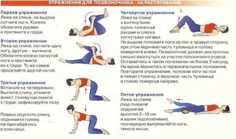 Топ-30 лучших упражнений для поясницы (фото + видео)