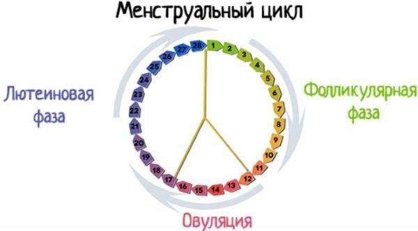 Лютеиновая фаза цикла: прогестерон