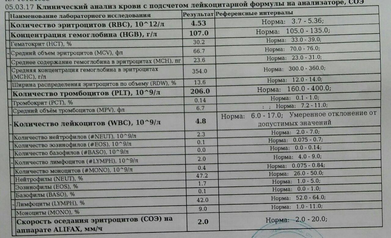 Норма тромбоцитов в крови у женщин по возрасту: таблица