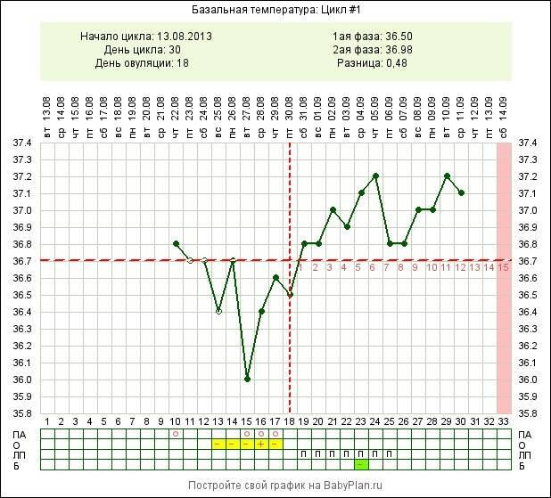 Ректальная температура при овуляции. исследование менструального цикла, температурная кривая :: polismed.com