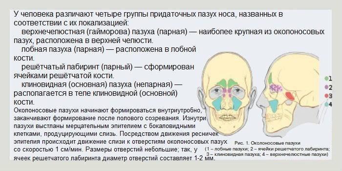 Острый верхнечелюстной синусит: основные симптомы и лечение