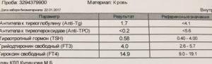 Антитела к тиреоглобулину повышены: причины, симптомы, лечение