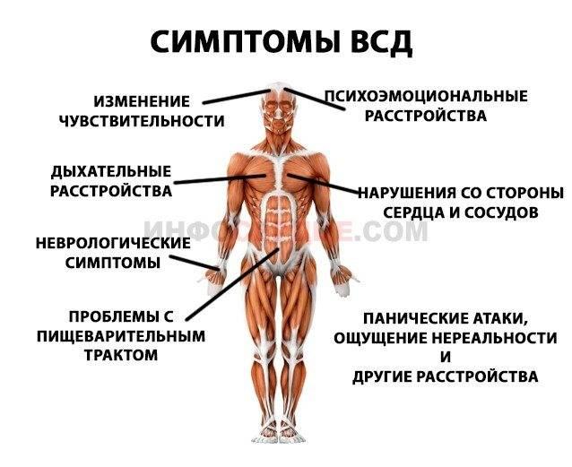Симптомы всд у женщин: признаки, как проявляется всд, лечение